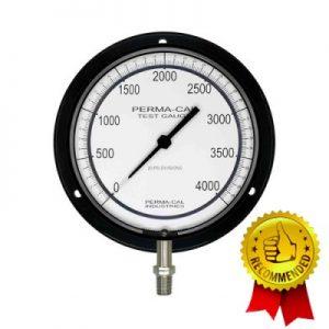 VianPool (Tiếng Việt) Đồng hồ áp suất chuẩn Perma-Cal